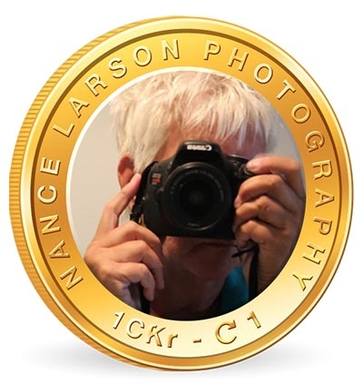 Photography Business Coin